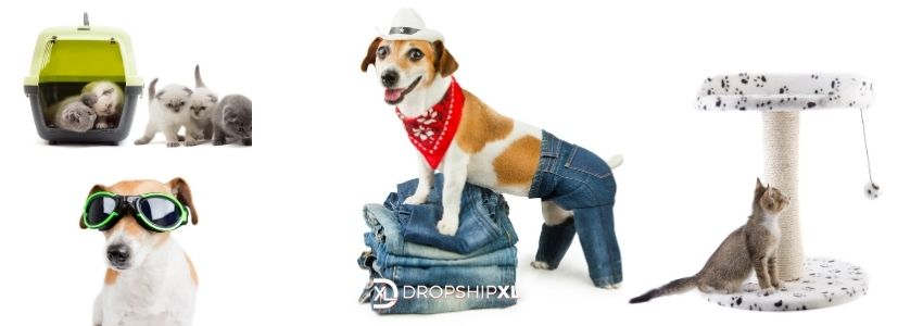 Dropship Suppliers for Wholesale Pet Supplies